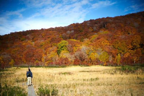 第13回白神山地ウォーキングツアー ~秋の白神山地を満喫する~